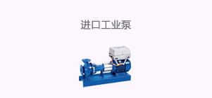 进口工业泵