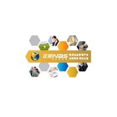 正航软件NBS—集团企业管理平台