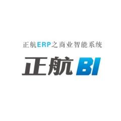 正航软件商业智能-BI