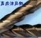 不锈钢铣刀 合金铣刀60度 钨钢铣刀 CNC数控刀具 2.5*7*4*50 图腾 60度铣刀 涂层
