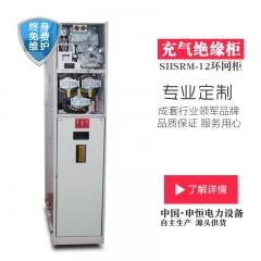 厂家热卖SF6六氟化硫充气式高压环网柜质保一年