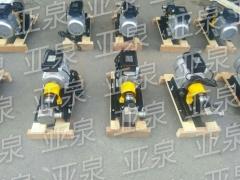 上海亚泉挠性泵