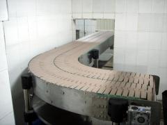 QR-LBSS链板输送机